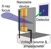 representative figure from In operando X-ray nanodiffraction reveals electrically induced bending and lattice contraction in single nanowire device